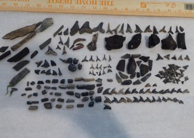 Overview of finds